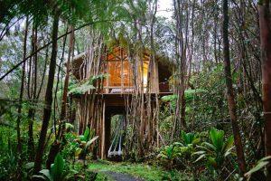 Airbnb Hawaii Treehouses