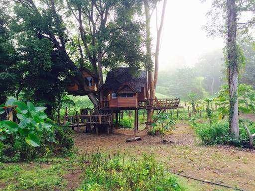 Rabeang Pasak tree house hotel in teak forest