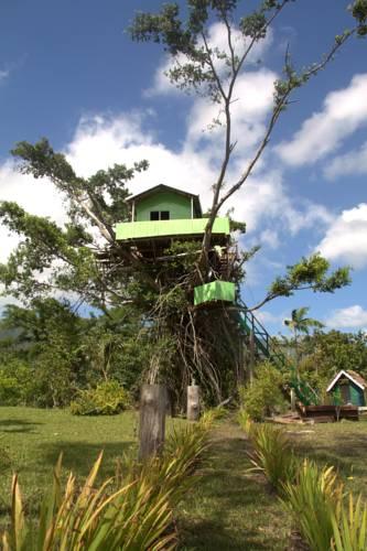 Jungle Oasis Bungalow Tree House Tanna Island