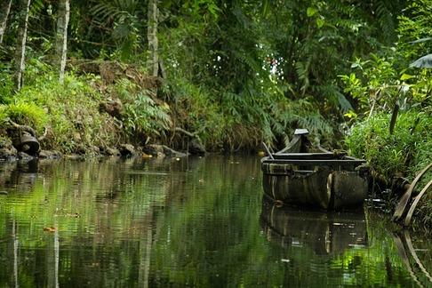 Kerala backwaters canal