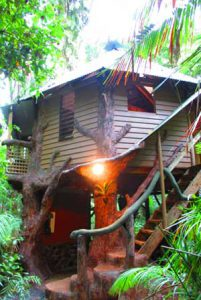 Daintree Jungle House Bedroom