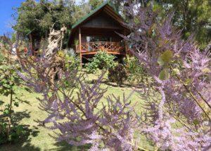 Oasis de Tendea Farino