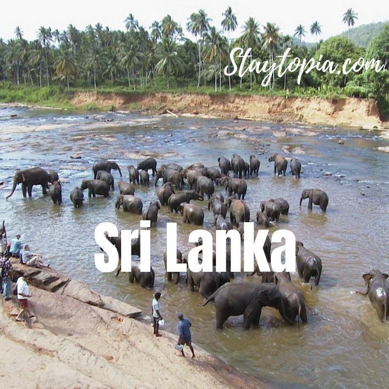Sri Lanka Country Search Staytopia