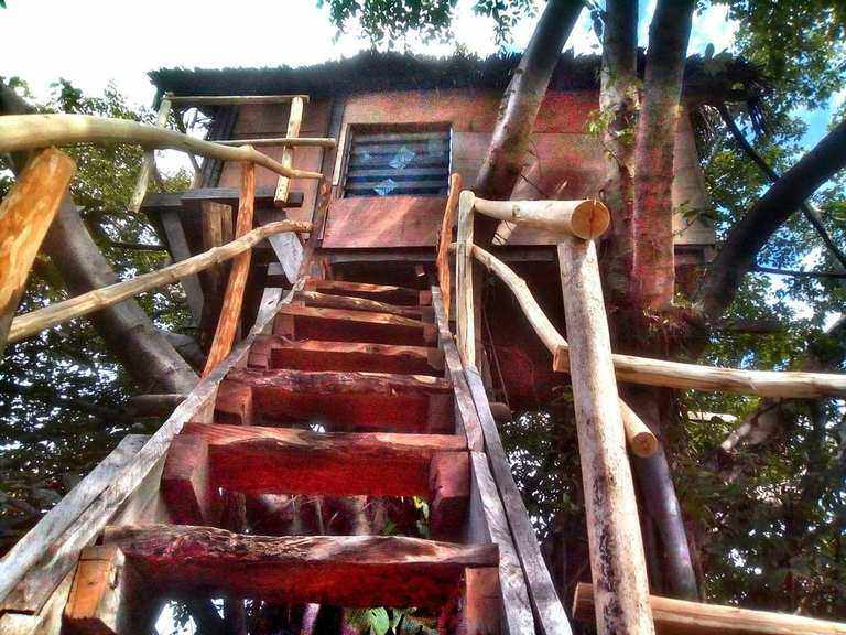 Volcano Eco Tree House - Tanna Island and the Volcano