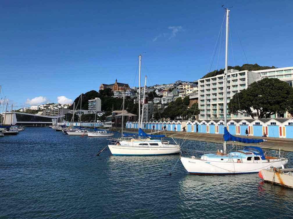 Marina, historic boatsheds and Oriental Bay