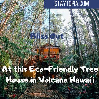 Eco Friendly Tree House in Volcano Hawaií Staytopia