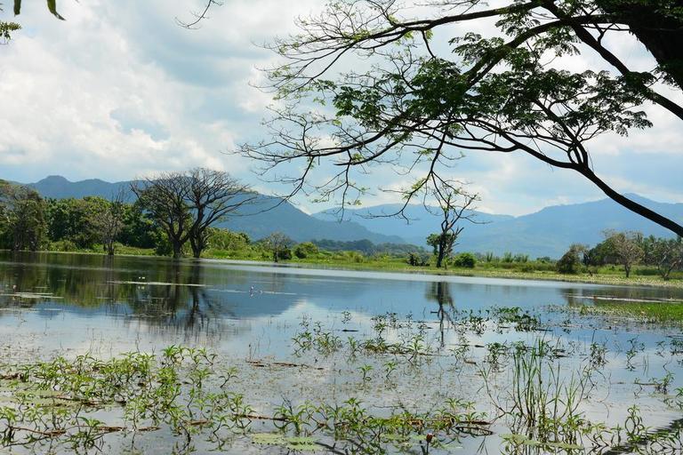 Mahagedara Wellness Retreat in Sri Lanka