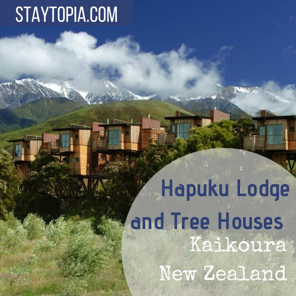 Hapuku Lodge and Tree Houses