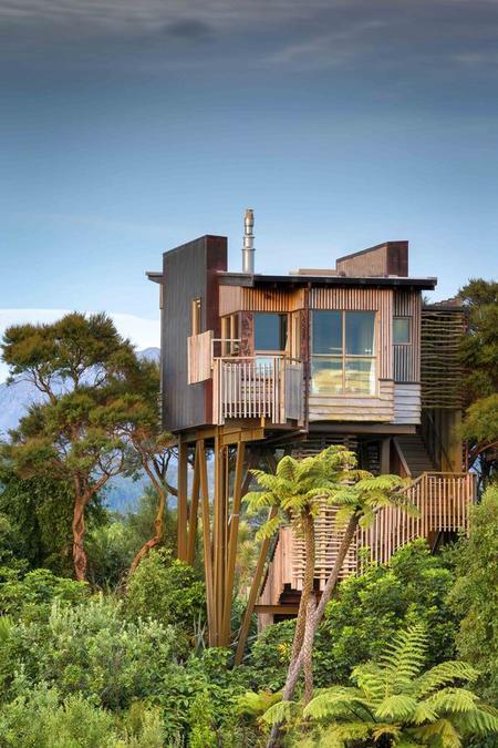 Hapuku Lodge and Tree House