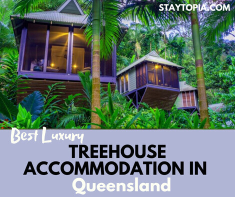 Best Luxury Treehouse Accommodation in Queensland