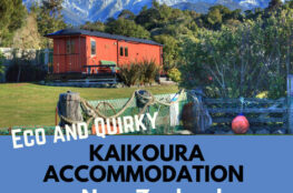 Eco and Quirky Kaikoura Accommodation