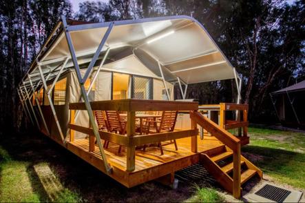 Discovery Parks Byron Bay Safari Tent