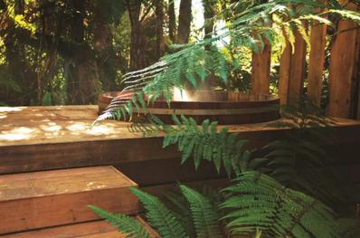 Treetops Lodge Rotorua spa pool - unique and boutique accommodation in Rotorua