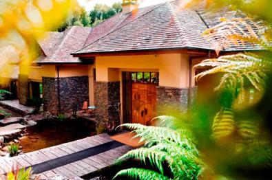 Treetops Lodge Rotorua - unique and boutique accommodation in Rotorua