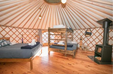 Oasis Yurt Lodge - Glamping in Wanaka