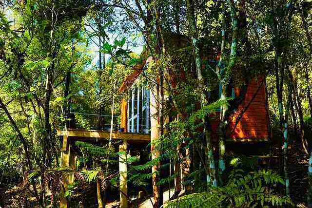 Fantail Bush Chalet - Unique and Affordable Auckland Accommodation