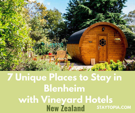 Unique Places to Stay in Blenhim with Vineyard Accommodation